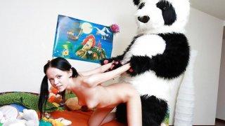 热的黑发小鸡他妈的与善良的熊猫熊