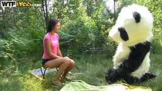 莫莉被树林里的角质熊猫搞砸了