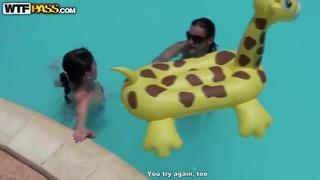 一群胖乎乎的女性驴子在游泳池里游泳