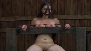 有限的担保人gal正在接受阴道处罚