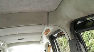 业余爱好者在假的出租车上遭遇巨大的山雀