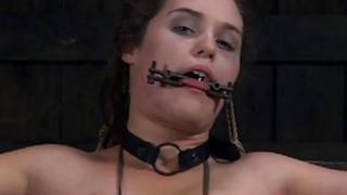 塞尔夫接受她受女神惩罚的海狸
