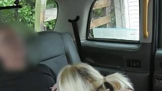 辫子的金发乘客得到猫在驾驶室里撞