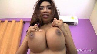 有大山雀的美味的泰国女孩吮坚硬公鸡POV