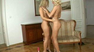 一个粉红色的假阳具为两个金发美女玛丽珍和卡罗琳娜