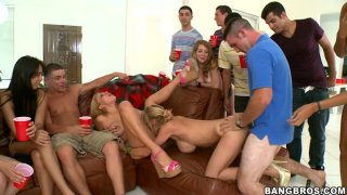 Horny pussy pack including Rachel Roxxx, Alexis Fawx and Jamie Valentine fuck restlessly